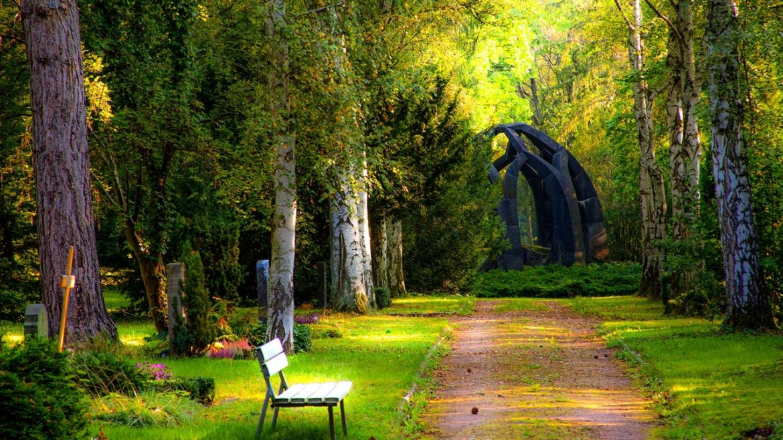 10 conseils pour transformer un jardin en paradis