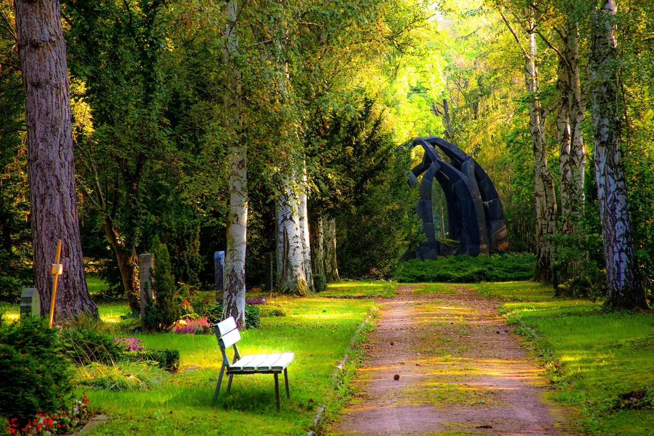 Exemple de jardin paradisiaque