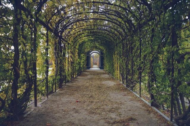 On dirait vraiment l'allé d'un paradis, magnifique ce jardin