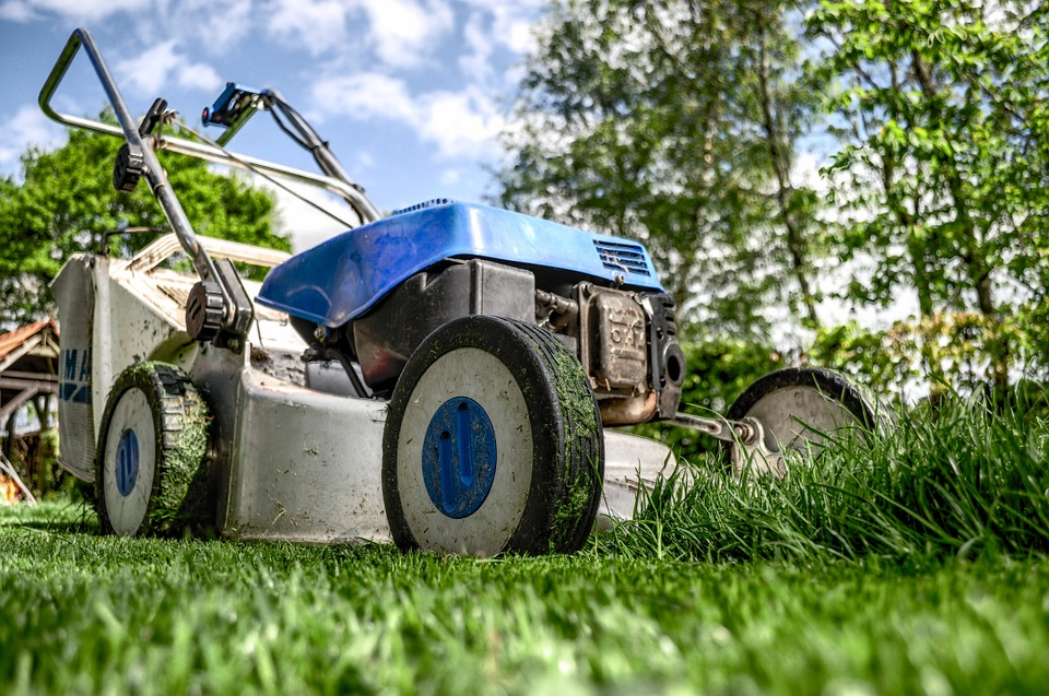 Le scarificateur est le matériel idéal pour ce genre de travaux de jardinage.