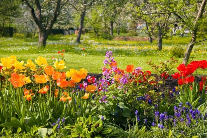 comment fleurir facilement son jardin ou son balcon avant gardening. Black Bedroom Furniture Sets. Home Design Ideas
