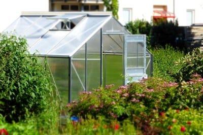 Une serre dans le jardin : zoom sur tous les avantages et les inconvénients !