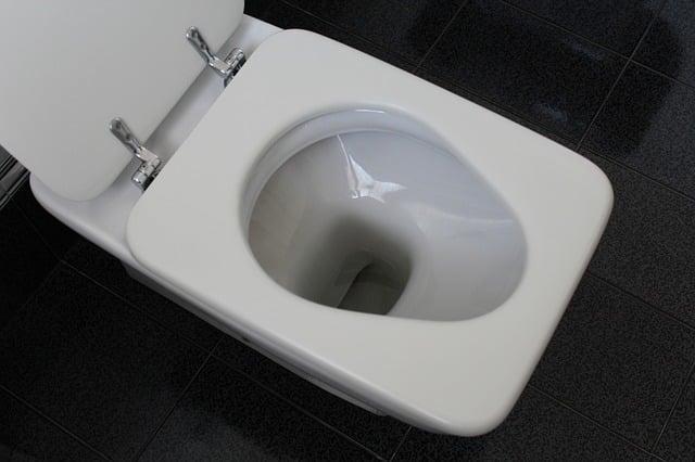 5 techniques pour résoudre un problème de toilettes bouchées