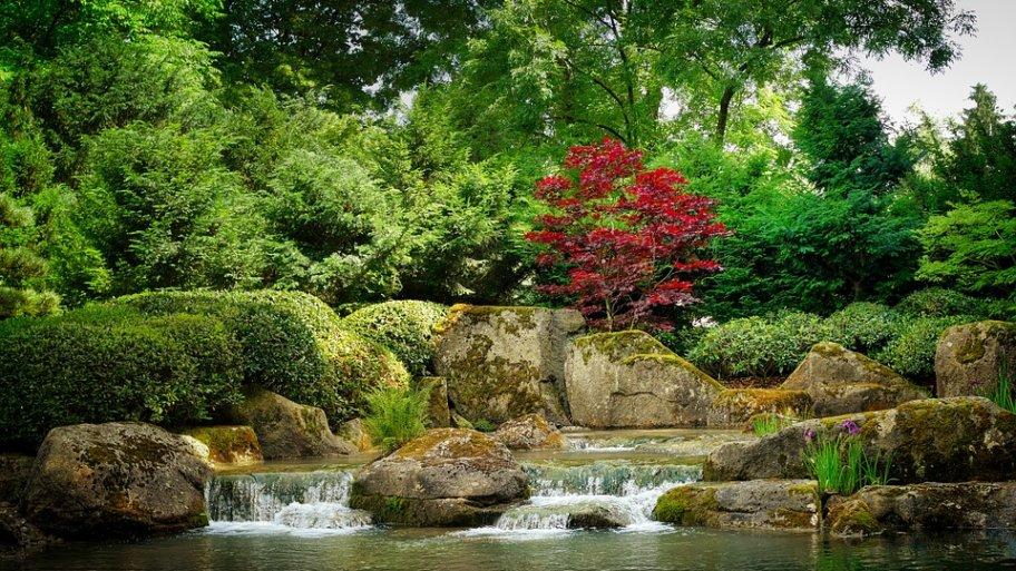 Et si l'art japonais du Kokedama s'invitait chez vous ?