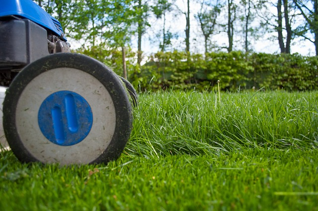 Aménagement et entretien du jardin : Les outils indispensables