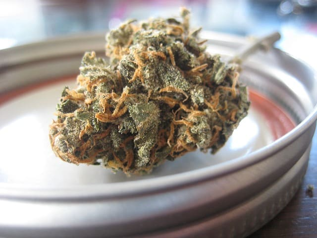 Tout Cannabis qui contient moins de 0,2% de THC en France est légal pour la consommation