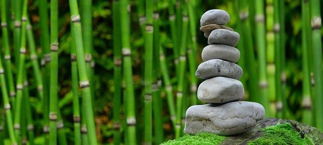 Les pierres jouent aussi un rôle très important dans la composition d'un Petit Jardin Japonais