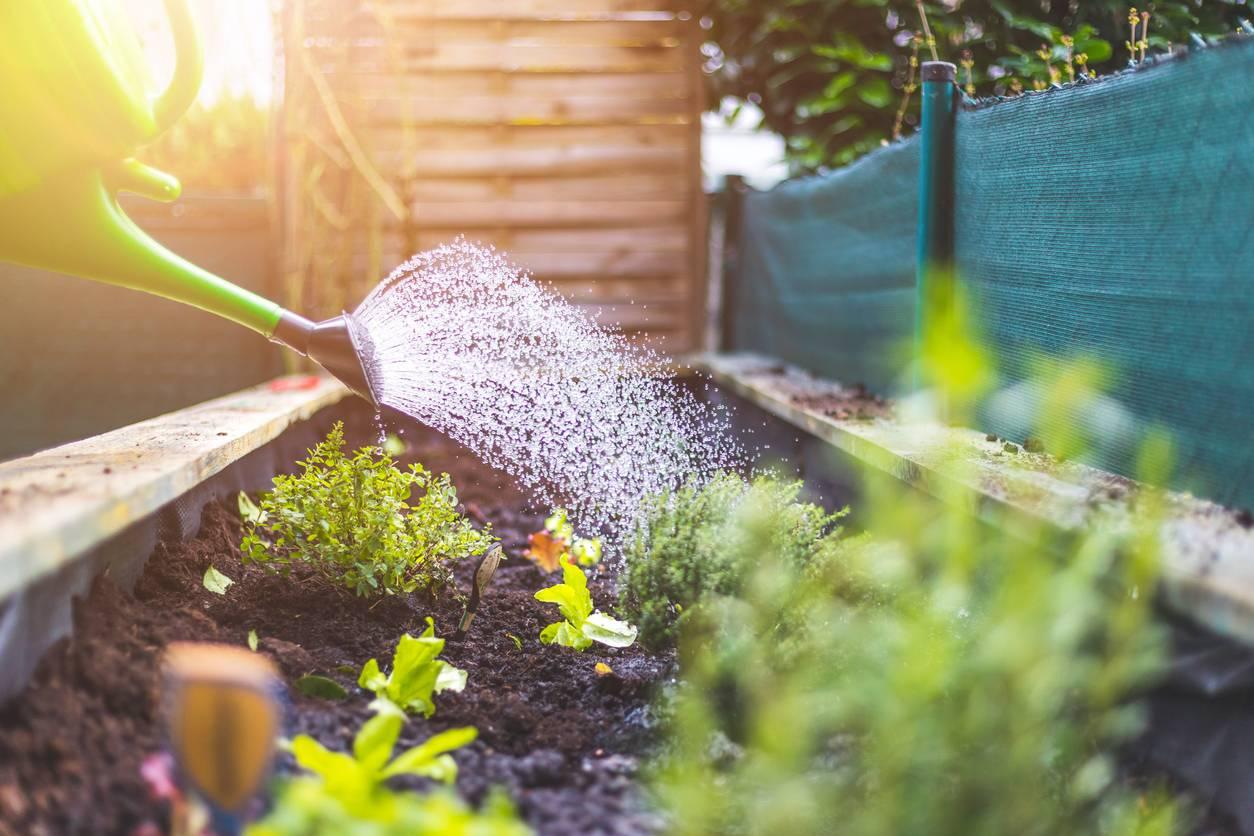 beau jardin écodurable