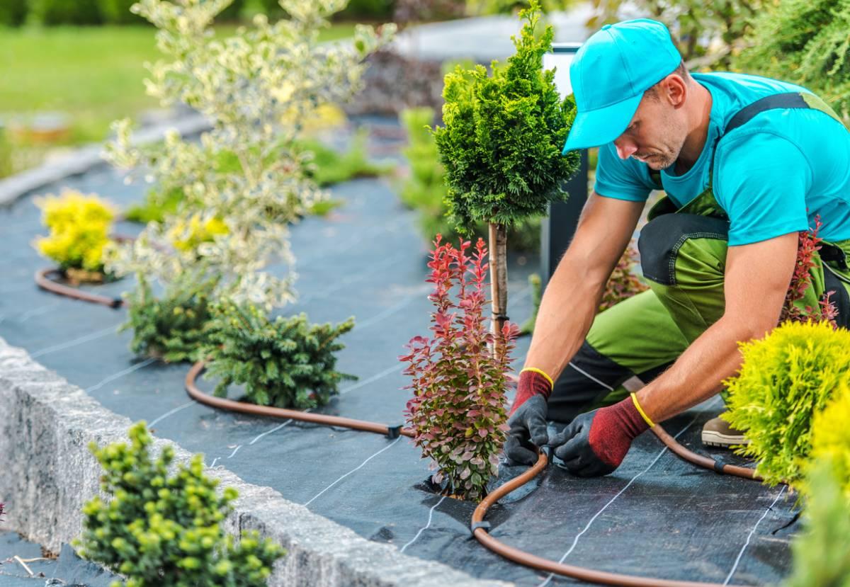 jardin écodurable