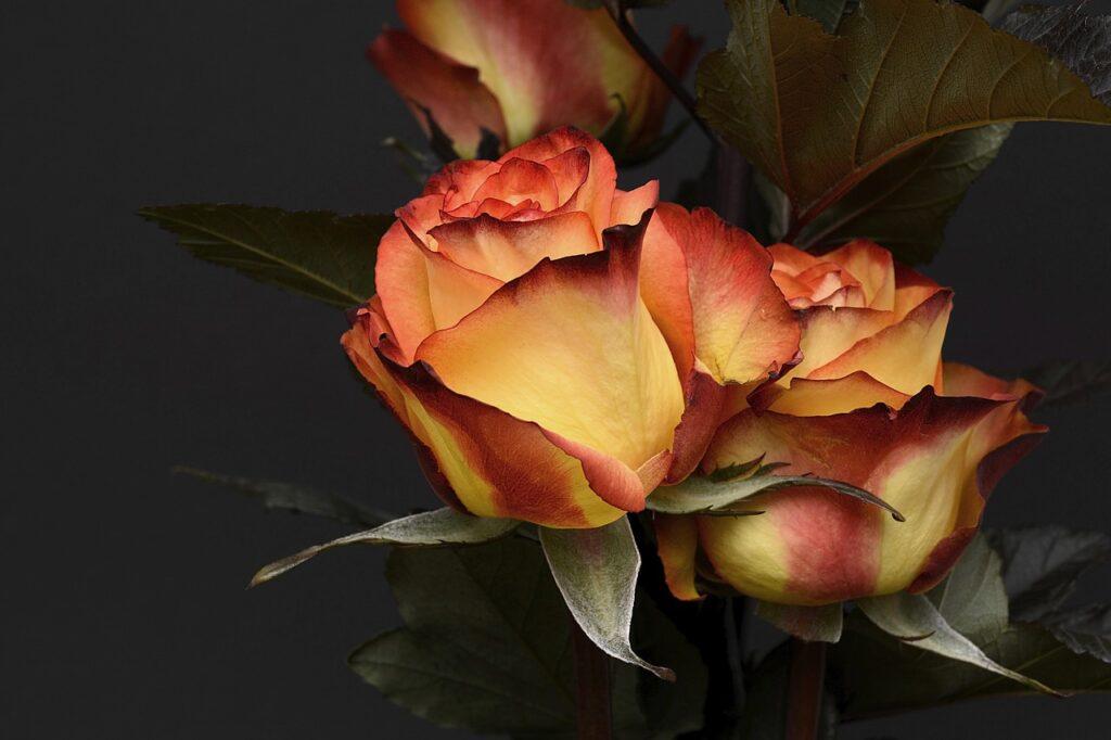 occasions pour livrer des fleurs