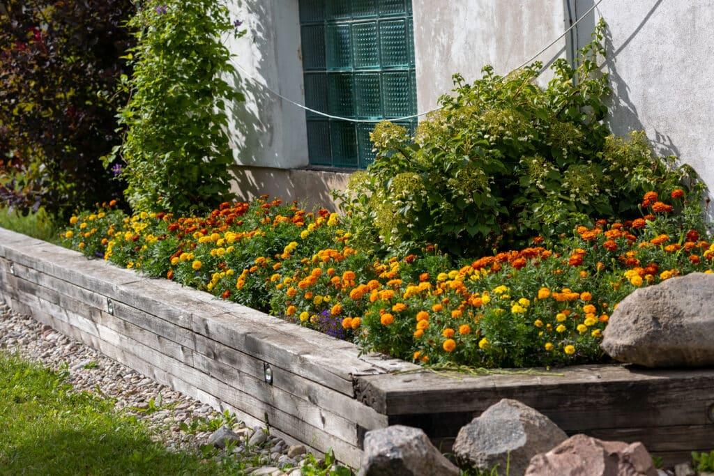comment créer un massif fleuri emplacement